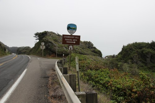 Sign